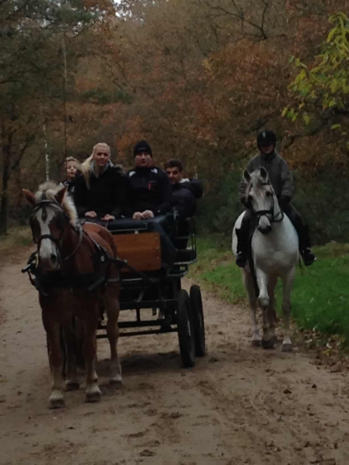 activiteiten te paard