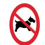 Verboden voor honden hondenbeleidspaal